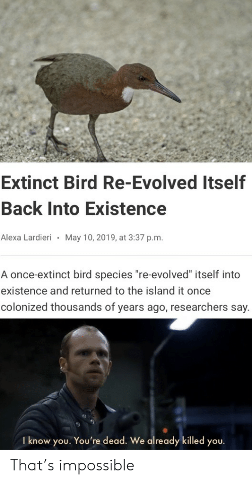 "Back, Once, and The Island: Extinct Bird Re-Evolved Itself  Back Into Existence  Alexa Lardieri  May 10, 2019, at 3:37 p.m.  A once-extinct bird species ""re-evolved"" itself into  existence and returned to the island it once  colonized thousands of years ago, researchers say.  I know you. You're dead. We already killed you. That's impossible"