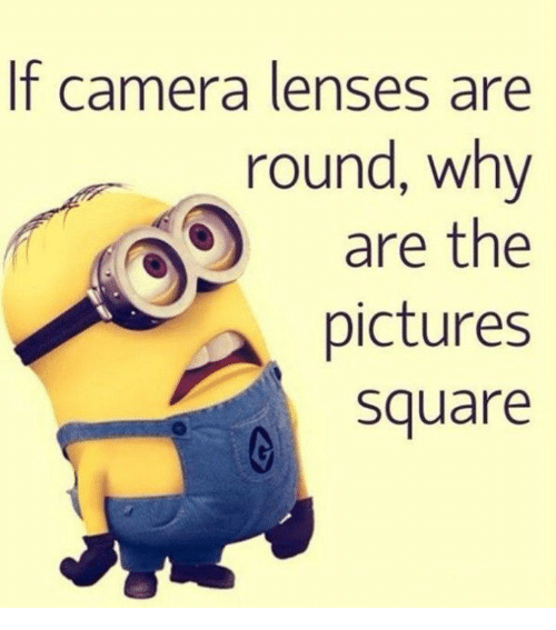 Camera, Pictures, and Square: f camera lenses are  round, why  are the  pictures  square