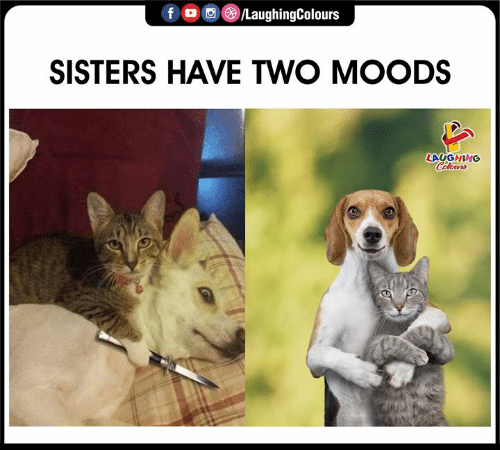 Indianpeoplefacebook, Sisters, and  Two: f /LaughingColours  SISTERS HAVE TWO MOODS  LAYGHING  Celours