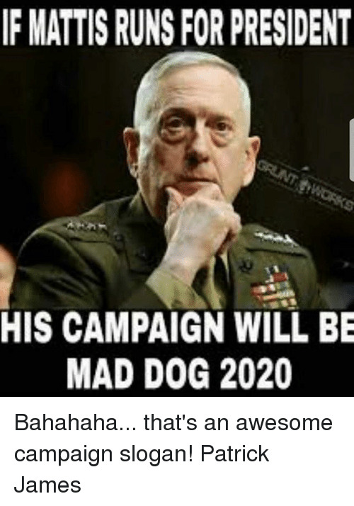 Jamesness: F MATTIS RUNS FOR PRESIDENT  HIS CAMPAIGN WILL BE  MAD DOG 2020 Bahahaha... that's an awesome campaign slogan!   Patrick James