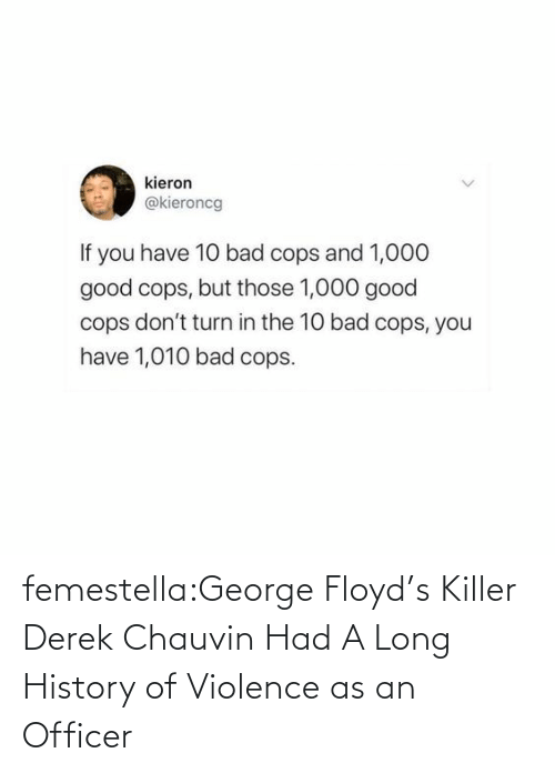 History: femestella:George Floyd's Killer Derek Chauvin Had A Long History of Violence as an Officer