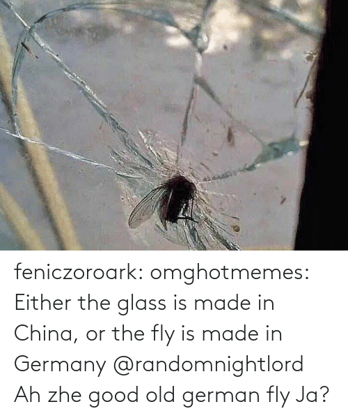 China: feniczoroark:  omghotmemes:  Either the glass is made in China, or the fly is made in Germany   @randomnightlord    Ah zhe good old german fly Ja?