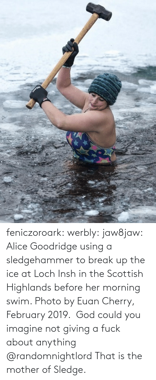 using: feniczoroark:  werbly:  jaw8jaw: Alice Goodridge using a sledgehammer to break up the ice at Loch Insh in the Scottish Highlands before her morning swim. Photo by Euan Cherry, February 2019.   God could you imagine not giving a fuck about anything    @randomnightlord    That is the mother of Sledge.