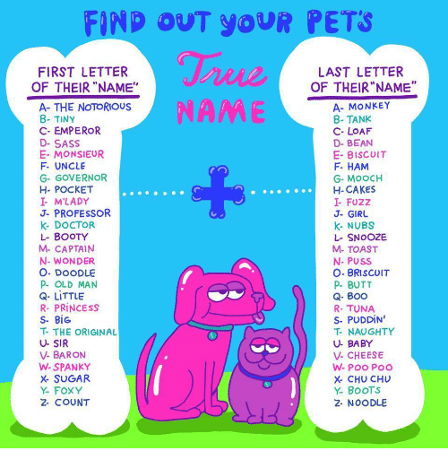 """Boo, Booty, and Butt: FIND OUT YoUR PETS  FIRST LETTER  LAST LETTER  OF THEIR""""NAME""""  OF THEIR """"NAME""""  A- THE NOTORIOUS  8- TINY  C- EMPEROR  D-SASS  E- MONSIEUR  F. UNCLE  G- GOVERNOR  H- POCKET  I M'LADY  J- PROFESSOR  k- DOCTOR  L- BOOTY  M- CAPTAIN  N- WONDER  O. DOODLE  P OLD MAN  Q- LITTLE  R. PRİNCESS  S- BİG  T- THE ORIGINAL  U- SIR  V- BARON  W- SPANKY  X SUGAR  Y- FOXY  2- COUNT  A- MONKEY  8- TANK  C- LOAF  D- BEAN  E- BISCuIT  F. HAM  G- MoOCH  H-CAKES  I- FUZZ  J- GIRU  k- NUBS  L- SNOOZE  M- TOAST  N- PUSS  O- BRISCUIT  P- BUTT  Q- BOO  R- TUNA  S-PUDDİN'  T- NAUGHTY  U- BABY  V- CHEESE  X- CHU CHU  Y. BooTS  2- NOODLE"""