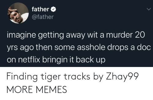 alt: Finding tiger tracks by Zhay99 MORE MEMES