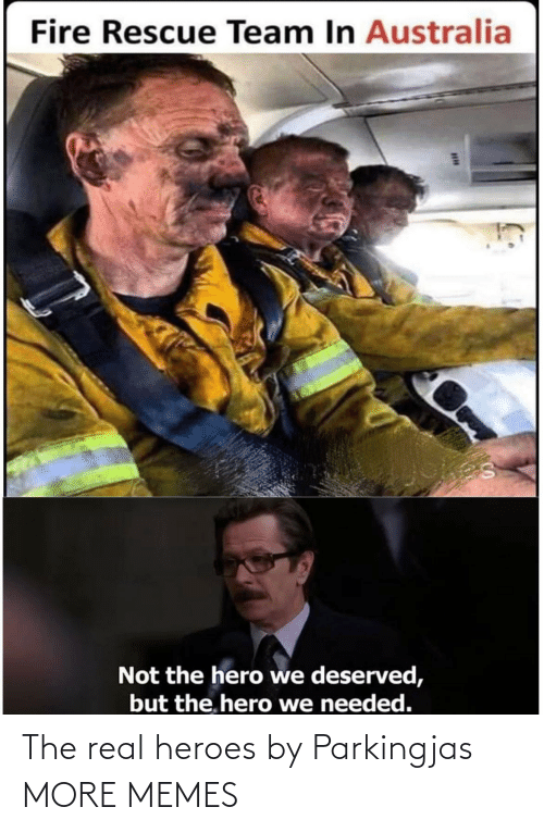 Not The: Fire Rescue Team In Australia  Not the hero we deserved,  but the. hero we needed. The real heroes by Parkingjas MORE MEMES