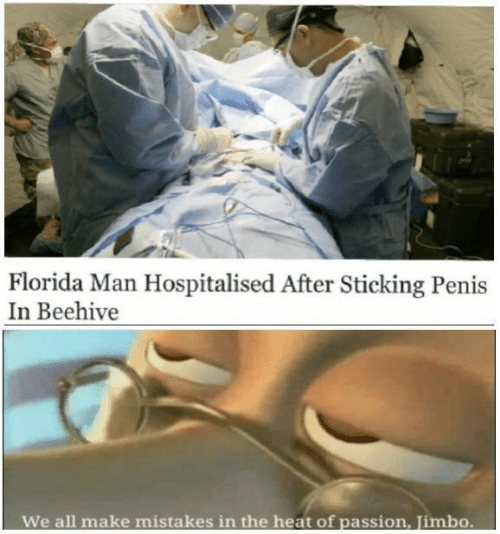 Penis: Florida Man Hospitalised After Sticking Penis  In Beehive  We all make  mistakes in the heat of passion, Jimbo.