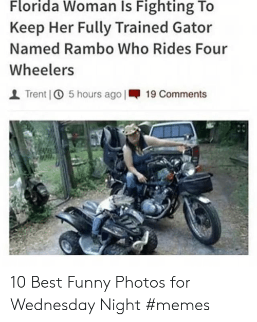 Funny, Memes, and Rambo: Florida Woman Is Fighting To  Keep Her Fully Trained Gator  Named Rambo Who Rides Four  Wheelers  Trent 5 hours ago |19 Comments 10 Best Funny Photos for Wednesday Night #memes