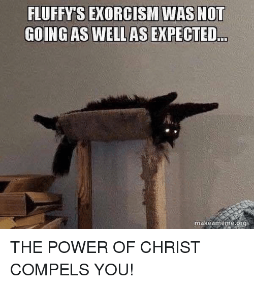 Power, Org, and Exorcism: FLUFFY'S EXORCISM WAS NOT  GOING AS WELLAS EXPECTED  makeameme,org THE POWER OF CHRIST COMPELS YOU!