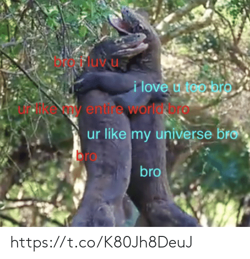 Love, Memes, and 🤖: Fluvu  i love u too hrO  E e any entine worldrore  ur like my universe bro  bro  bro https://t.co/K80Jh8DeuJ