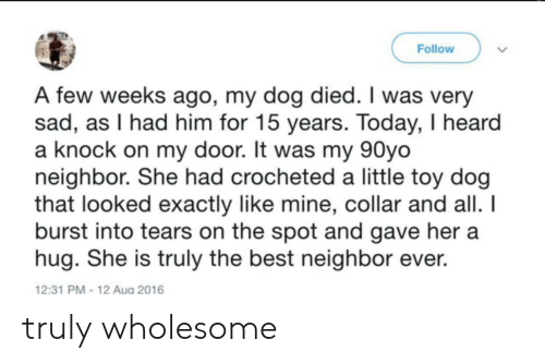 Best, Today, and Sad: Follow  A few weeks ago, my dog died. I was very  sad, as I had him for 15 years. Today, I heard  a knock on my door. It was my 90yo  neighbor. She had crocheted a little toy dog  that looked exactly like mine, collar and all.  burst into tears on the spot and gave her a  hug. She is truly the best neighbor ever  12:31 PM-12 Aug 2016 truly wholesome