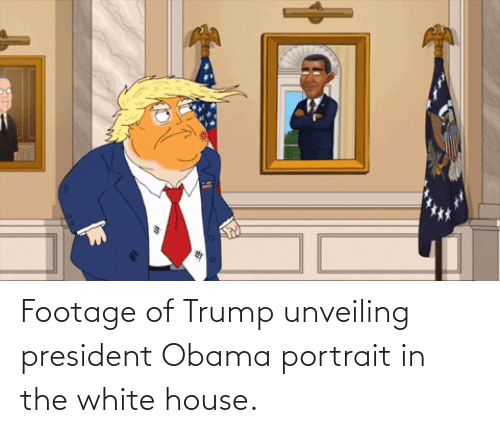 White House: Footage of Trump unveiling president Obama portrait in the white house.