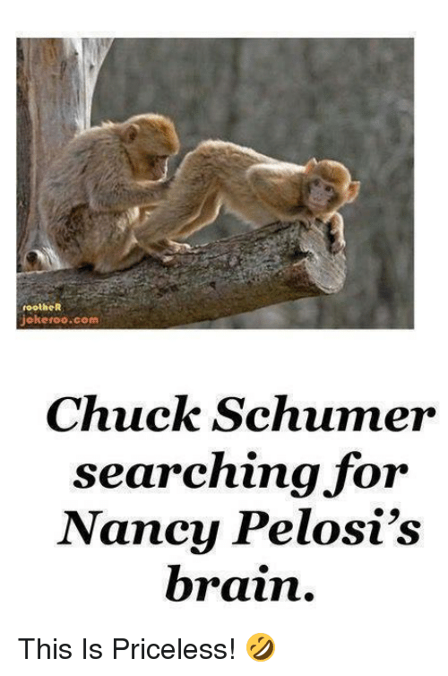 chuck schumer: footheR  jokeroo.com  Chuck Schumer  searching for  Nancy Pelosi's  brain. This Is Priceless! 🤣