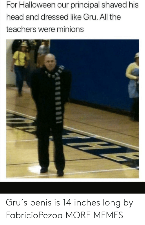Penis: For Halloween our principal shaved his  head and dressed like Gru. All the  teachers were minions Gru's penis is 14 inches long by FabricioPezoa MORE MEMES