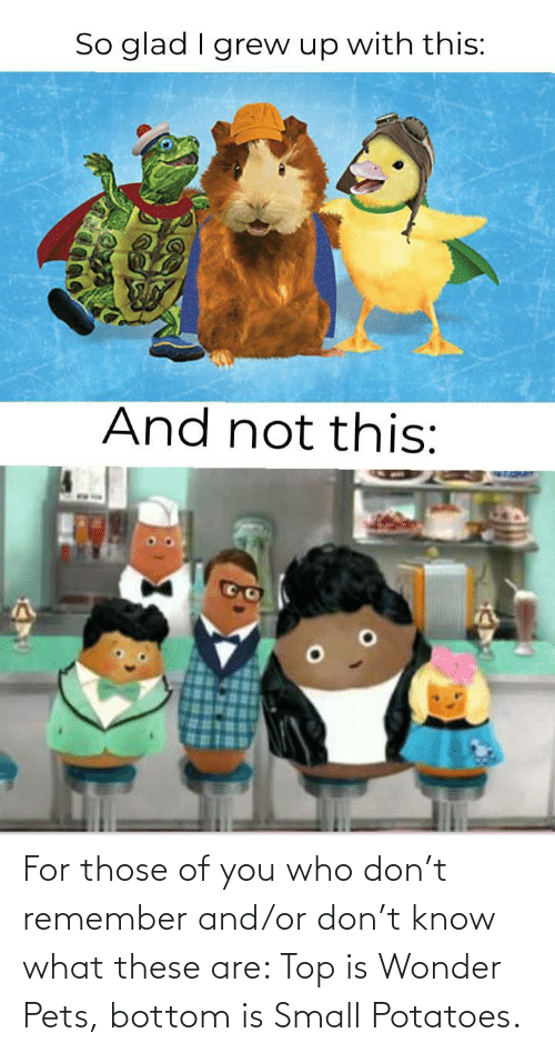 top: For those of you who don't remember and/or don't know what these are: Top is Wonder Pets, bottom is Small Potatoes.