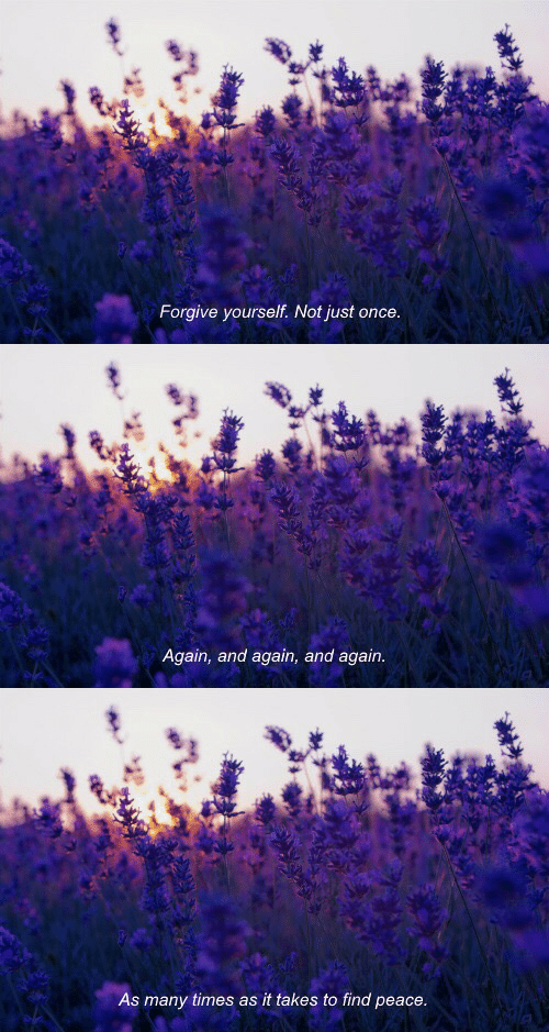 find: Forgive yourself. Not just once   Again, and again, and again.   As many times as it takes to find peace.