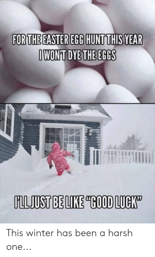 Be Like, Easter, and Memes: FORTHE EASTER EGG HUNTTHIS YEAR  IWONT DYE THE EGGS  FLLJUST BE LIKE GOOD LUCK This winter has been a harsh one...