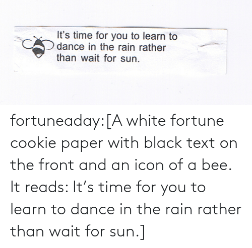 Dance: fortuneaday:[A white fortune cookie paper with black text on the front and an icon of a bee. It reads: It's time for you to learn to dance in the rain rather than wait for sun.]