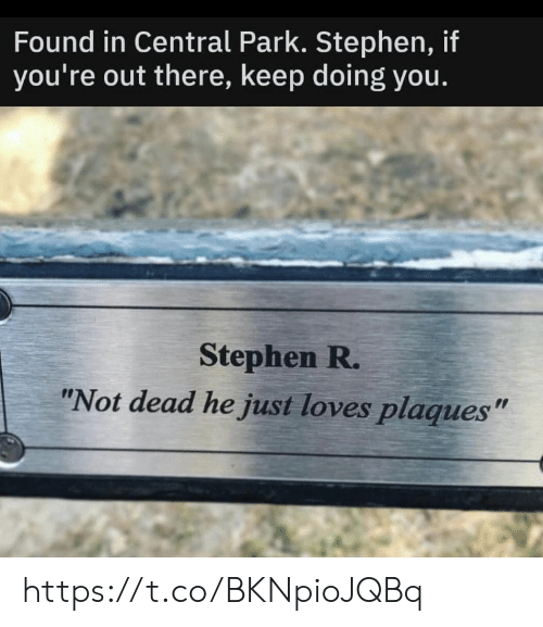 """Stephen: Found in Central Park. Stephen, if  you're out there, keep doing you.  Stephen R.  """"Not dead he just loves plaques"""" https://t.co/BKNpioJQBq"""