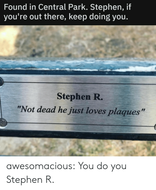 """Stephen: Found in Central Park. Stephen, if  you're out there, keep doing you.  Stephen R.  """"Not dead he just loves plaques"""" awesomacious:  You do you Stephen R."""
