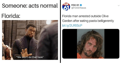 FOX Someone Acts Normal FOX 61 Florida Florida Man Arrested