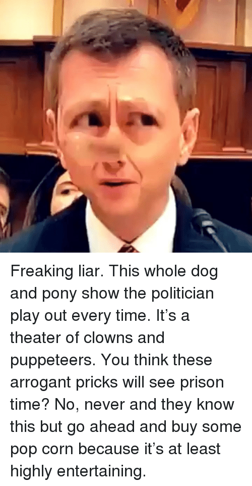 Memes, Pop, and Clowns: Freaking liar. This whole dog and pony show the politician play out every time. It's a theater of clowns and puppeteers. You think these arrogant pricks will see prison time? No, never and they know this but go ahead and buy some pop corn because it's at least highly entertaining.