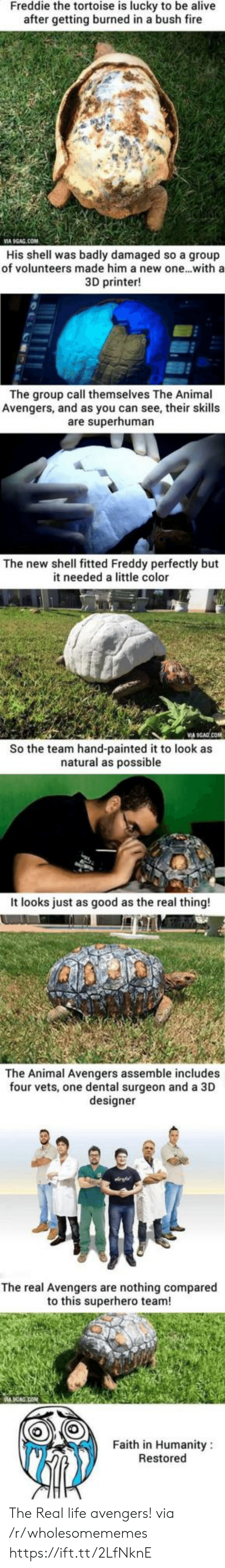 Humanity Restored: Freddie the tortoise is lucky to be alive  after getting burned in a bush fire  VIA 9GAG.COM  His shell was badly damaged so a group  of volunteers made him a new one...with a  3D printer!  The group call themselves The Animal  Avengers, and as you can see, their skills  are superhuman  The new shell fitted Freddy perfectly but  it needed a little color  So the team hand-painted it to look as  natural as possible  It looks just as good as the real thing!  The Animal Avengers assemble includes  four vets, one dental surgeon and a 3D  designer  The real Avengers are nothing compared  to this superhero team!  Faith in Humanity  Restored The Real life avengers! via /r/wholesomememes https://ift.tt/2LfNknE