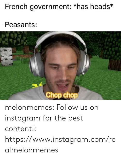 Instagram, Tumblr, and Best: French government: *has heads*  Peasants:  Chop chop melonmemes:  Follow us on instagram for the best content!: https://www.instagram.com/realmelonmemes