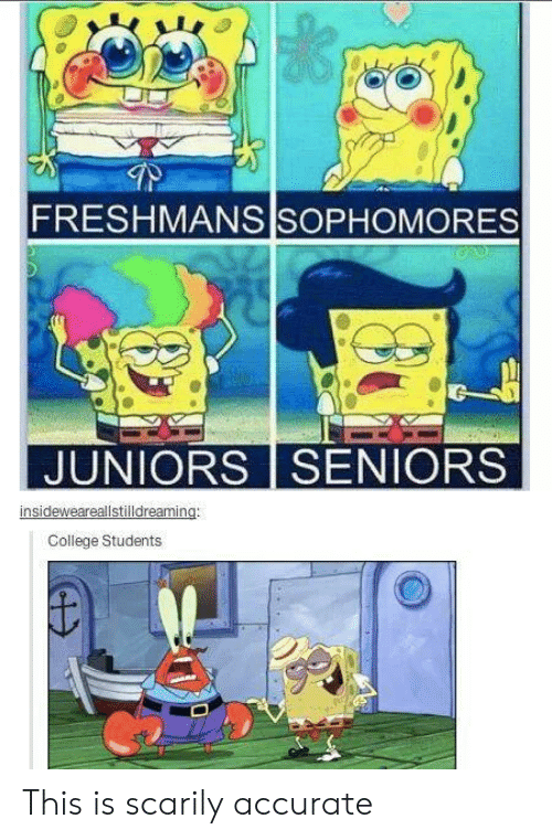 College, Seniors, and This: FRESHMANS SOPHOMORES  JUNIORS SENIORS  insideweareallstilldreaming:  College Students This is scarily accurate