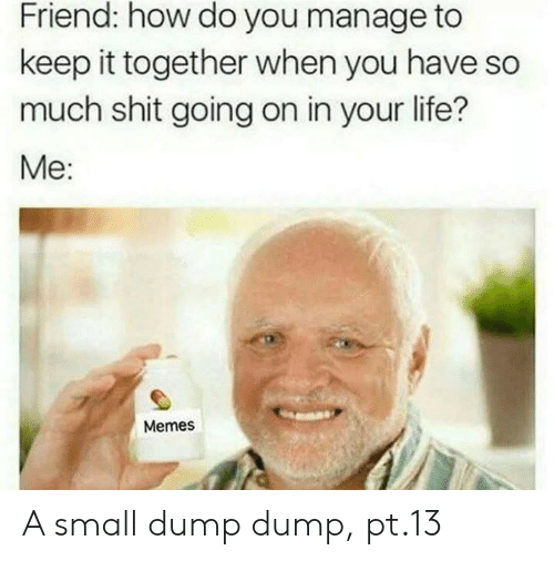 Manage: Friend: how do you manage to  keep it together when you have so  much shit going on in your life?  Me:  Memes A small dump dump, pt.13