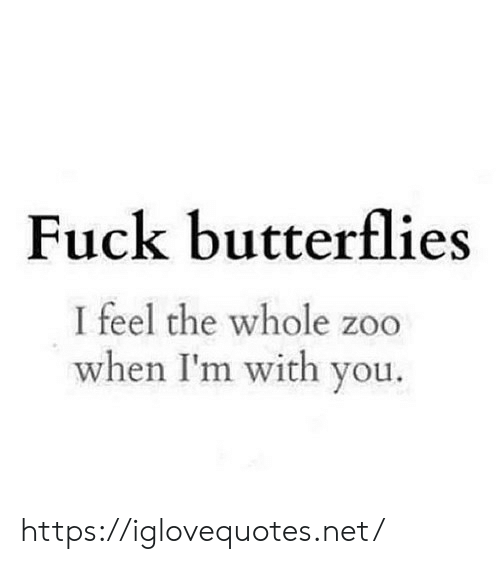 butterflies: Fuck butterflies  I feel the whole zoo  when I'm with you. https://iglovequotes.net/