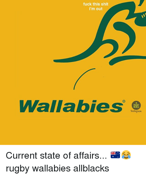 Memes Instagram: fuck this shit  i'm out  Wallabies  MEMES  Instagram Current state of affairs... 🇦🇺😂 rugby wallabies allblacks