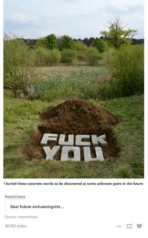 Future, Humans of Tumblr, and Buried: FUEK  I buried these concrete words to be discovered at some unknown point in the future  heartchaos:  Dear future archaeologists...  Source: memewhore  42,593 notes