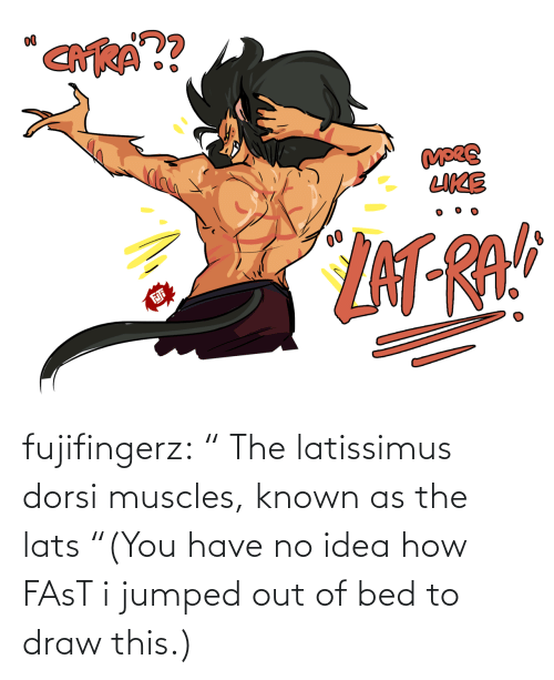 "no idea: fujifingerz:    "" The latissimus dorsi muscles, known as the lats  ""(You have no idea how FAsT i jumped out of bed to draw this.)"