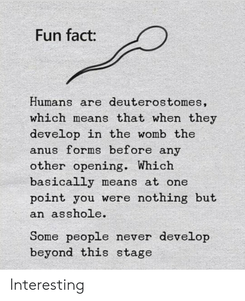womb: Fun fact:  Humans are deuterostomes,  which means that when they  develop in the womb the  anus forms before any  other opening. Which  basically means at one  point you were nothing but  an asshole.  Some people never develop  beyond this stage Interesting