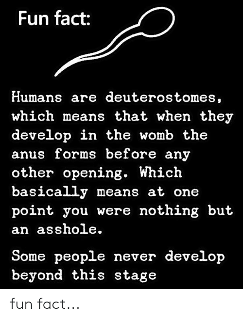 womb: Fun fact:  Humans are deuterostomes,  which means that when they  develop in the womb the  anus forms before any  other opening. Which  basically means at one  point you were nothing but  an asshole.  Some people never develop  beyond this stage fun fact...