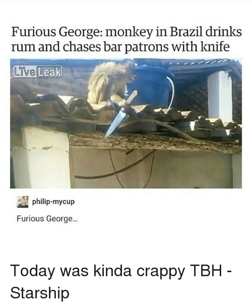 Memes, Tbh, and Brazil: Furious George: monkey in Brazil drinks  rum and chases bar patrons with knife  Live  Leak  philip-mycup  Furious George. Today was kinda crappy TBH -Starship