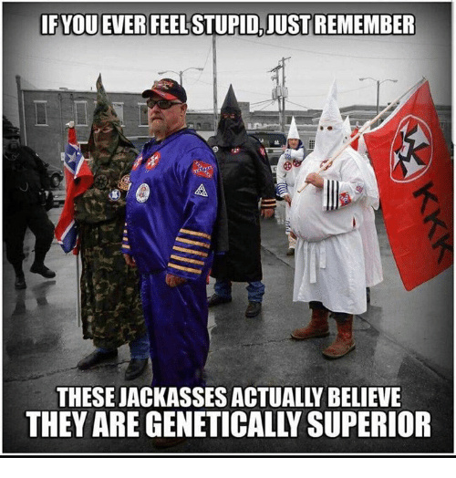 fyou: FYOU EVER FEEL STUPID,JUST REMEMBER  THESE JACKASSES ACTUALLY BELIEVE  THEY ARE GENETICALLY SUPERIOR