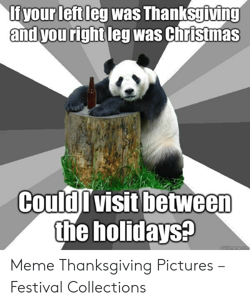 Christmas, Meme, and Thanksgiving: fyour leftleg was Thanksgiving  and you right leg was Christmas  CouldIvisit between  the holidays?  quickmemecom Meme Thanksgiving Pictures – Festival Collections