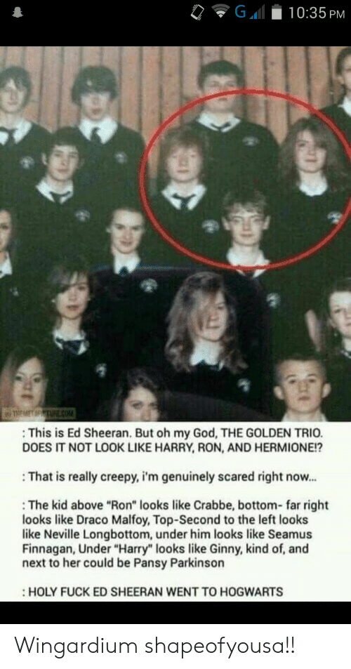 """Hermione: G  10:35 PM  TREMET MPTURE cOM  This is Ed Sheeran. But oh my God, THE GOLDEN TRIO.  DOES IT NOT LOOK LIKE HARRY, RON, AND HERMIONE!?  That is really creepy, i'm genuinely scared right now...  The kid above """"Ron"""" looks like Crabbe, bottom- far right  looks like Draco Malfoy, Top-Second to the left looks  like Neville Longbottom, under him looks like Seamus  Finnagan, Under """"Harry"""" looks like Ginny, kind of, and  next to her could be Pansy Parkinson  HOLY FUCK ED SHEERAN WENT TO HOGWARTS Wingardium shapeofyousa!!"""