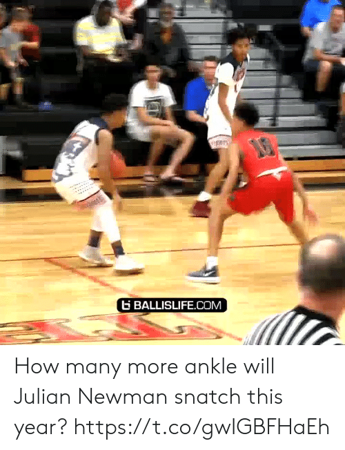 Memes, Newman, and 🤖: G BALLISLIFE.COM How many more ankle will Julian Newman snatch this year? https://t.co/gwIGBFHaEh