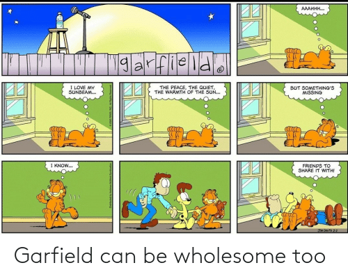 Wholesome, Garfield, and Can: Garfield can be wholesome too