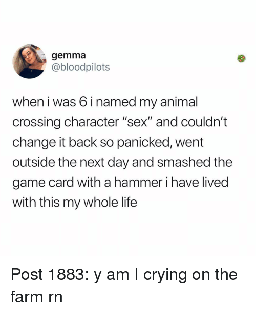 """Crying, Life, and Memes: gemma  @bloodpilots  when i was 6 i named my animal  crossing character """"sex"""" and couldn't  change it back so panicked, went  outside the next day and smashed the  game card with a hammer i have lived  with this my whole life Post 1883: y am I crying on the farm rn"""