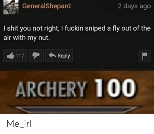 Shit, Irl, and Me IRL: GeneralShepard  2 days ago  I shit you not right, I fuckin sniped a fly out of the  air with my nut.  Reply  117  ARCHERY 100 Me_irl