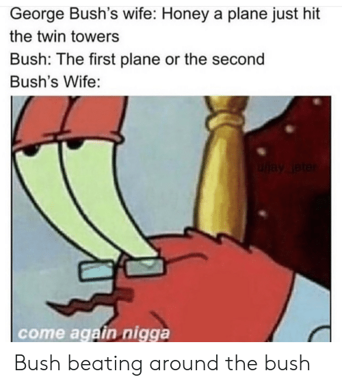 Wife, Bush, and Honey: George Bush's wife: Honey a plane just hit  the twin towers  Bush: The first plane or the second  Bush's Wife:  uay leter  come again nigga Bush beating around the bush