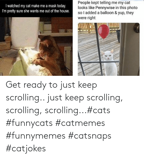 Cats: Get ready to just keep scrolling.. just keep scrolling, scrolling, scrolling...#cats #funnycats #catmemes #funnymemes #catsnaps #catjokes