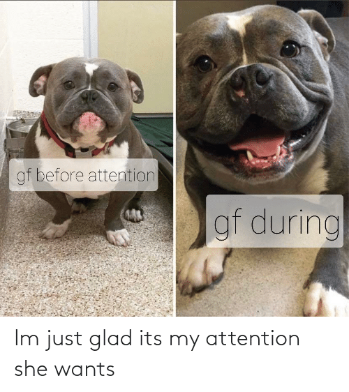 She, Glad, and Just: gf before attention  gf during Im just glad its my attention she wants