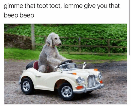 Toots: gimme that toot toot, lemme give you that  beep beep