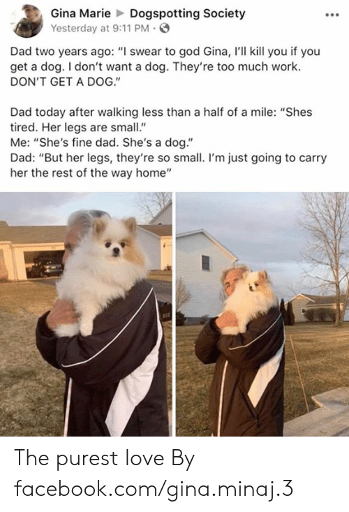 """I Swear To God: Gina MarieDogspotting Society  Yesterday at 9:11 PM  Dad two years ago: """"I swear to god Gina, I'll kill you if you  get a dog. I don't want a dog. They're too much work.  DON'T GET A DOG.""""  Dad today after walking less than a half of a mile: """"Shes  tired. Her legs are small""""  Me: """"She's fine dad. She's a dog.""""  Dad: """"But her legs, they're so small. I'm just going to carry  her the rest of the way home"""" The purest love  By facebook.com/gina.minaj.3"""
