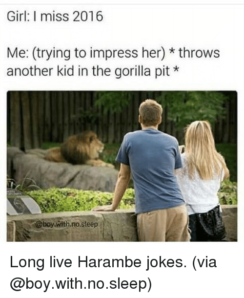 Harambism: Girl: I miss 2016  Me: (trying to impress her) throws  another kid in the gorilla pit  @boy with no steep Long live Harambe jokes. (via @boy.with.no.sleep)